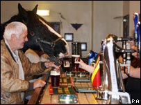 peggy-horse-in-bar.jpg